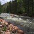 Poudre River Raft Trip